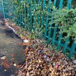 LHL_2020_008e: photograph showing a long line of rocks and pebbles on a pavement which lead up to green railings. There are piles of crisp brown leaves behind them. The rocks and pebbles have been painted with images and messages. Thumbnail